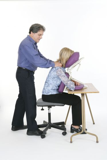 Pisces Productions Dolphinette Desk Topper™