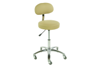 TouchAmerica ProStool with Back - Standard Height Option