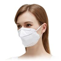 KN95 Face Mask - Single Use